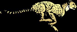 cheetahfast